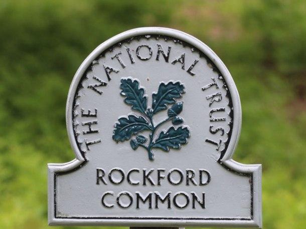 rockfordsundayweb